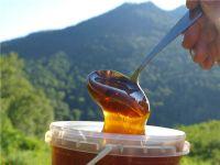 Мёд Майский горный. Абхазия, село Псху.